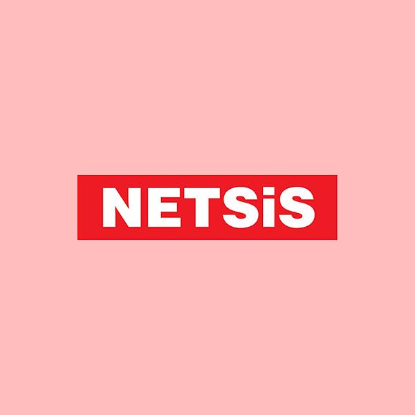 Netsis